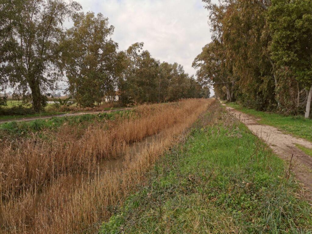 progetto greenchange canali di bonifica sopralluoghi